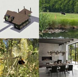 villa-in-Dutch-forest-4
