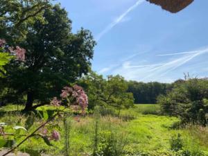 villa-in-Dutch-forest-7